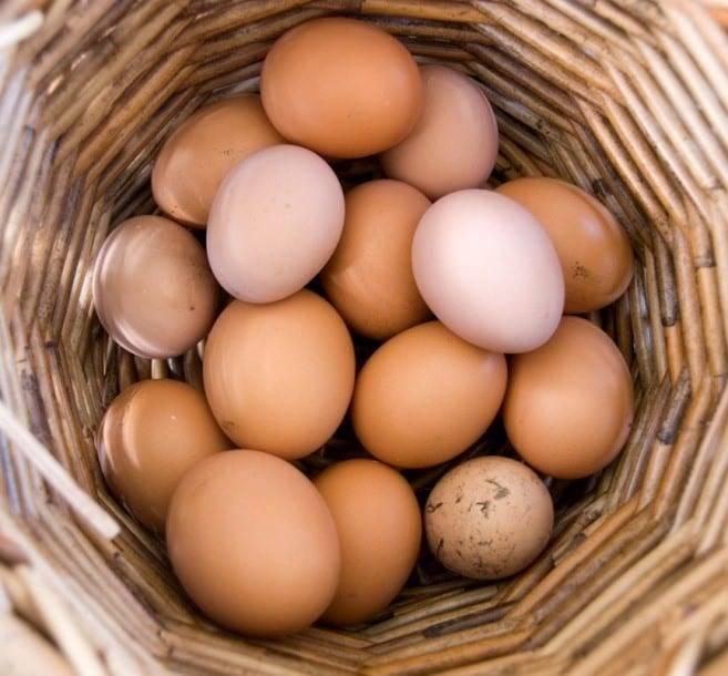 К чему снятся вареные яйца по соннику? видеть во сне вареные яйца – толкование снов.