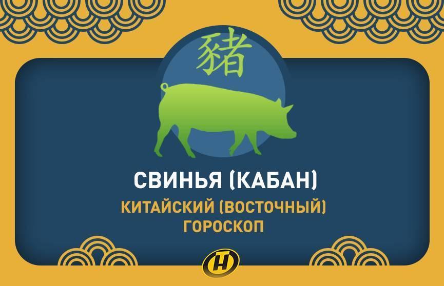 Весы-свинья (кабан) характеристика знака