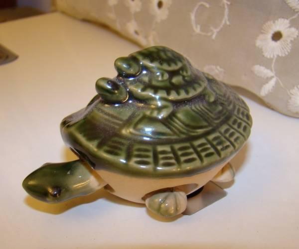 Черепаха по фен шуй: куда поставить символ удачи