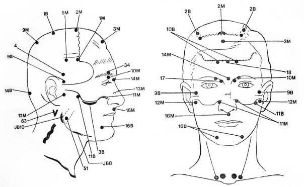 Тема 5 анатомия болевых (уязвимых) точек человека. штурмовой бой гром. техника