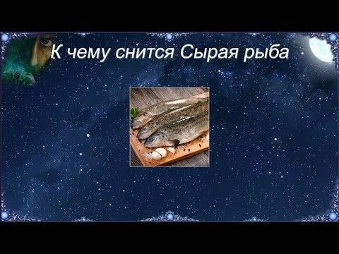 К чему снится рыба – толкование сна :: инфониак