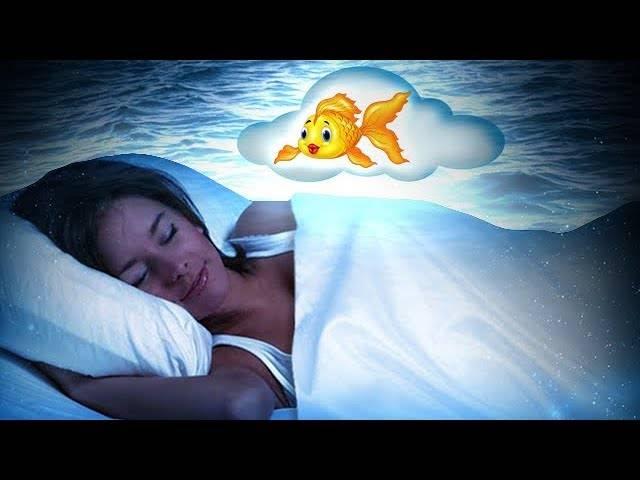К чему снится рыба женщине: значение сна, самое полное толкование сновидений по соннику