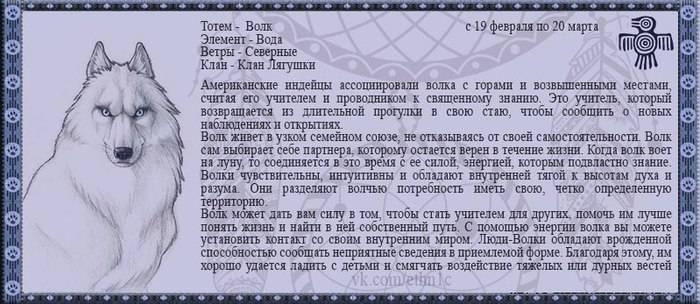 Шестой знак сварожьего круга – чертог медведя (10 января – 3 февраля)