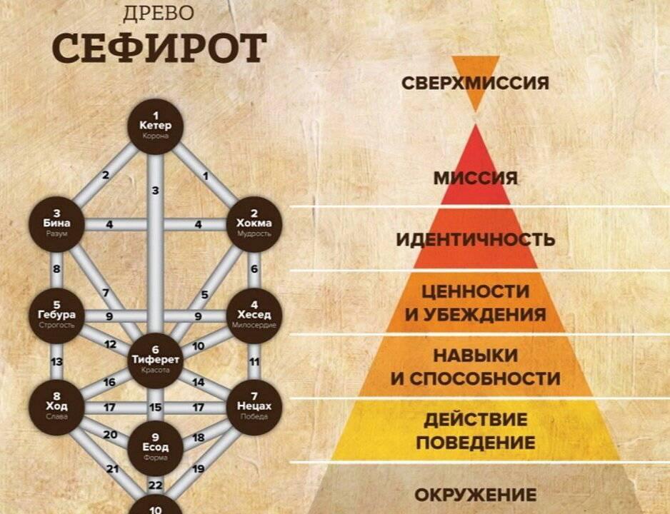 Дерево сефирот и карты таро | эзотерический портал