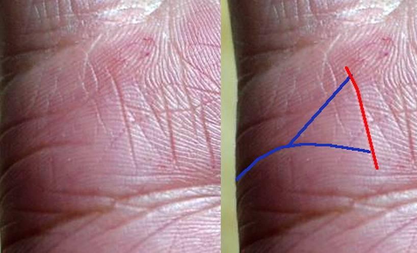 Линия жизни на руке — расшифровка с фото
