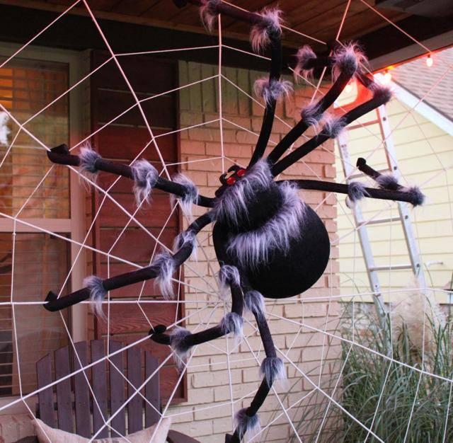 К чему снится огромный паук