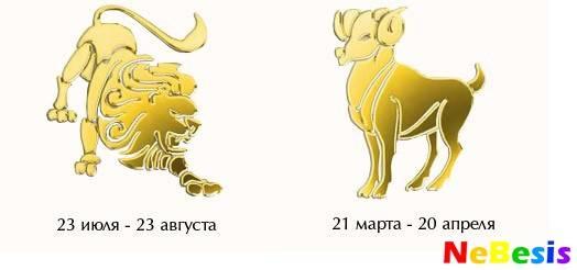 Мужчина тигр ( характеристика ) гороскоп, любовь, семья, год