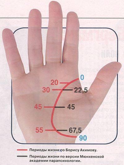 Линия путешествий на руке — расшифровка с фото