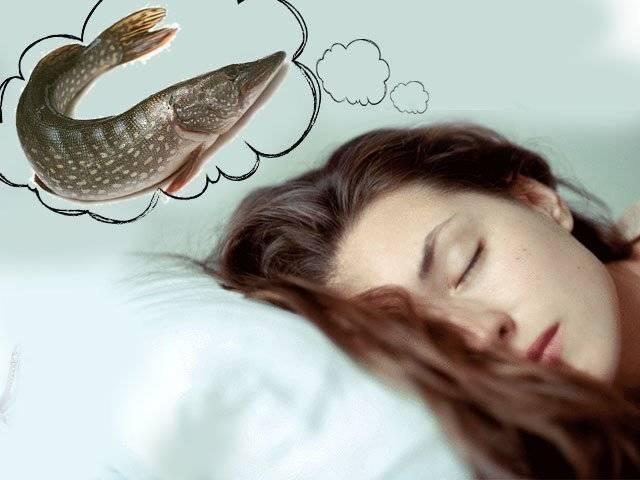К чему снится ловить руками рыбу: значение и толкование сновидения