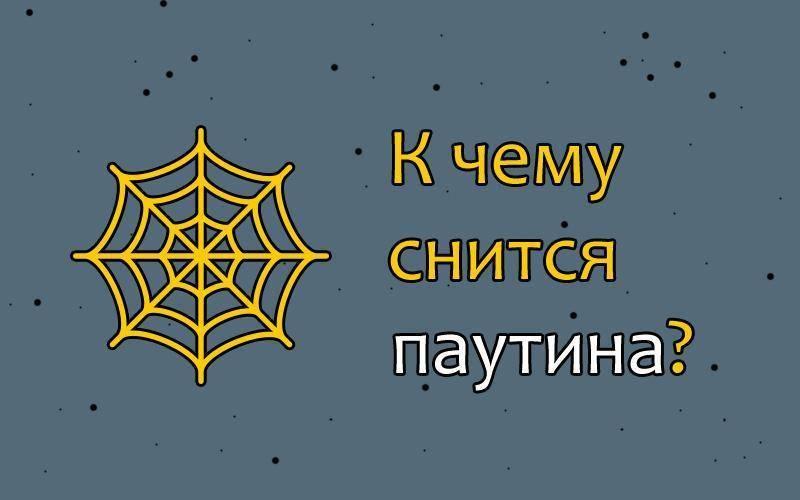 Сонник пауки и паутина – что это значит. как расшифровать подобное сновидение?