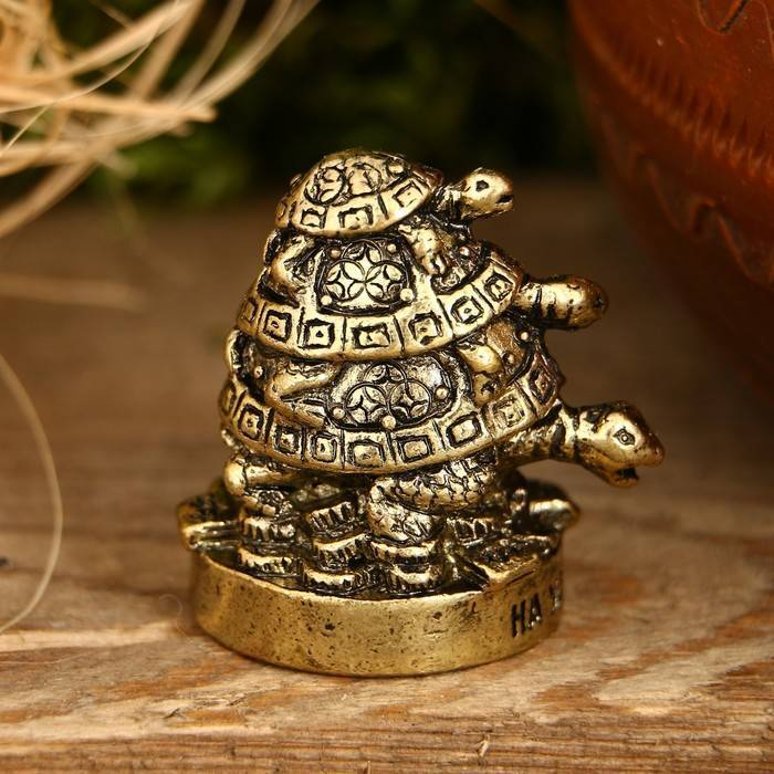 Черепаха: символ чего, что означает по фен шуй, как сделать талисман