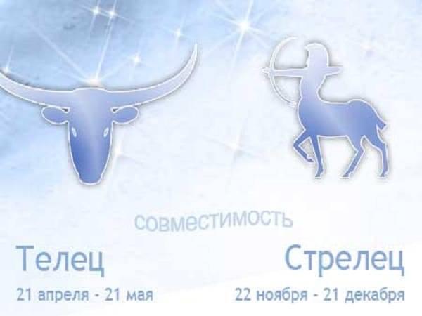 Совместимость: мужчина-телец и женщина-телец