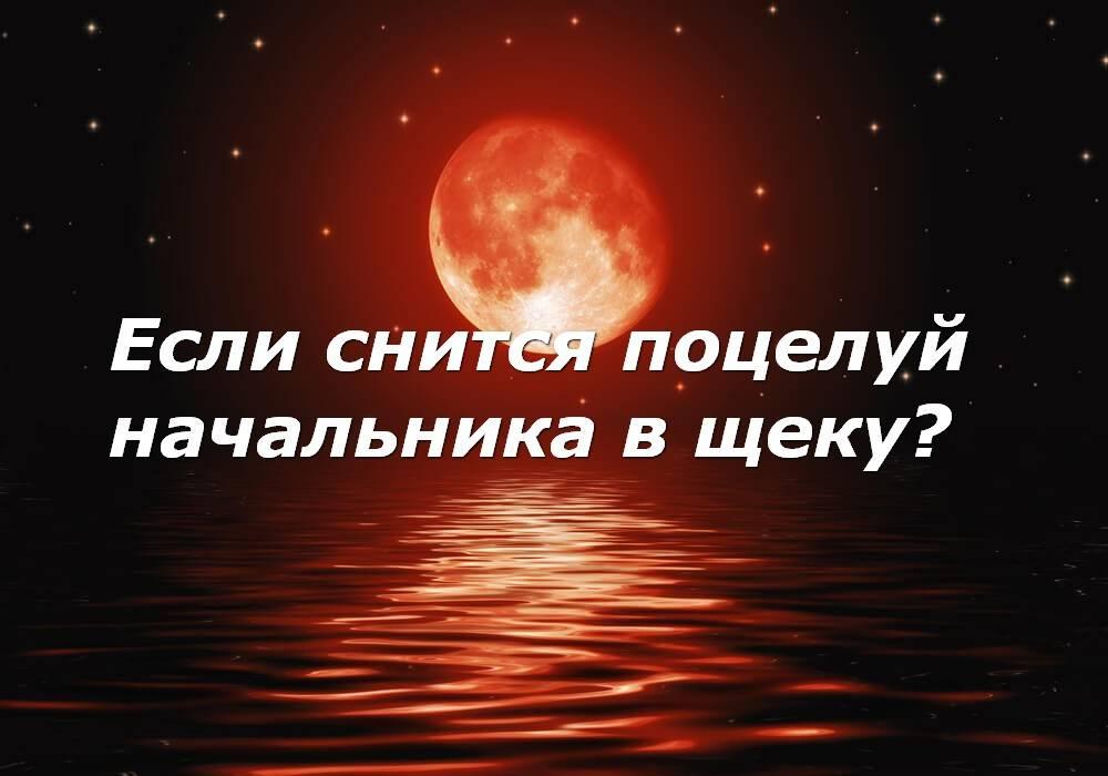 К чему снится целоваться с покойником - 7 толкований по сонникам
