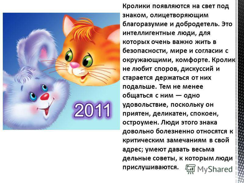Год кролика (кот) гороскоп ( характеристика, виды ) совместимость
