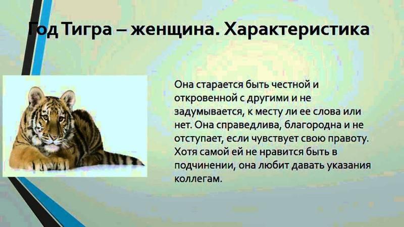 Дева тигр знак зодиака
