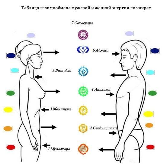 Что такое энергообмен между мужчиной и женщиной. как происходит обмен энергией между мужчиной и женщиной | здоровое питание