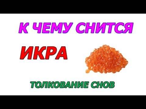 Черная икра толкование сонника — сонник i-sonnik.ru