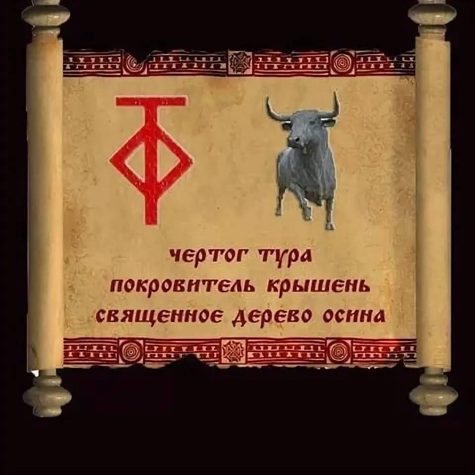Чертог бусла или аиста: описание символа и его значение, как оберега, для женщин и мужчин, изготовление своими руками, татуировки с таким знаком