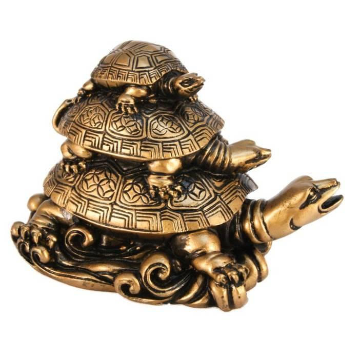 Черепаха: символ чего по фэншуй? черепаха - символ чего в россии? :: syl.ru