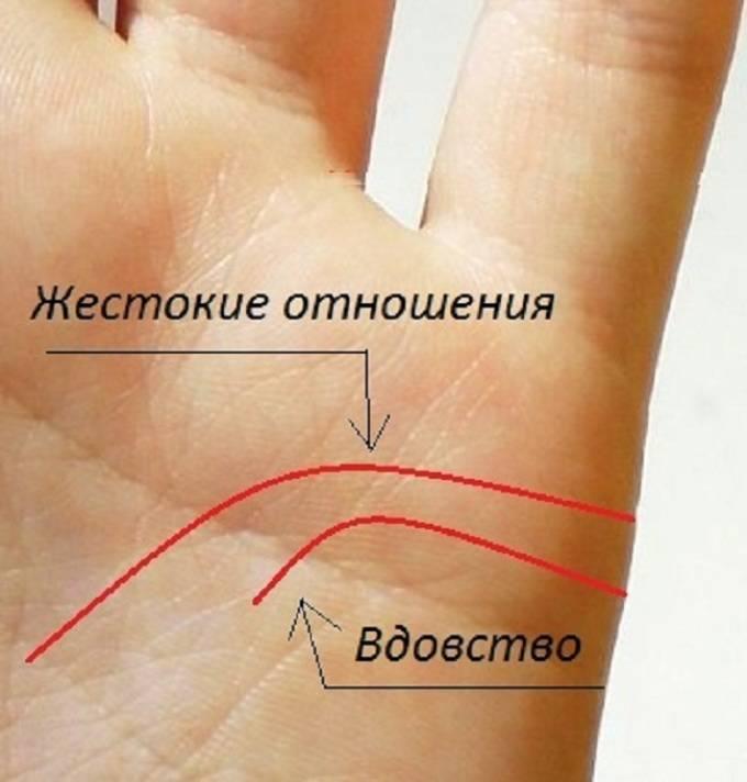 Руки известных людей, хиромантия, особые знаки   узнай свою судьбу