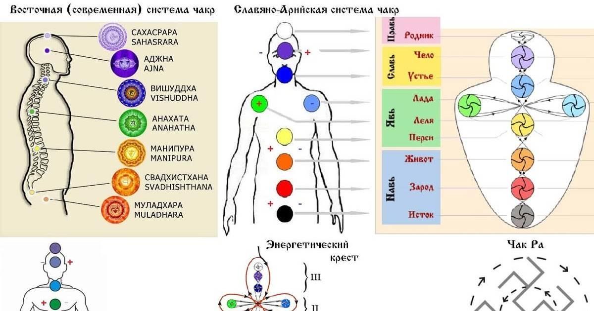 Чакры человека: что такое чакры и каково значение каждой из 7 чакр » университет mindvalley