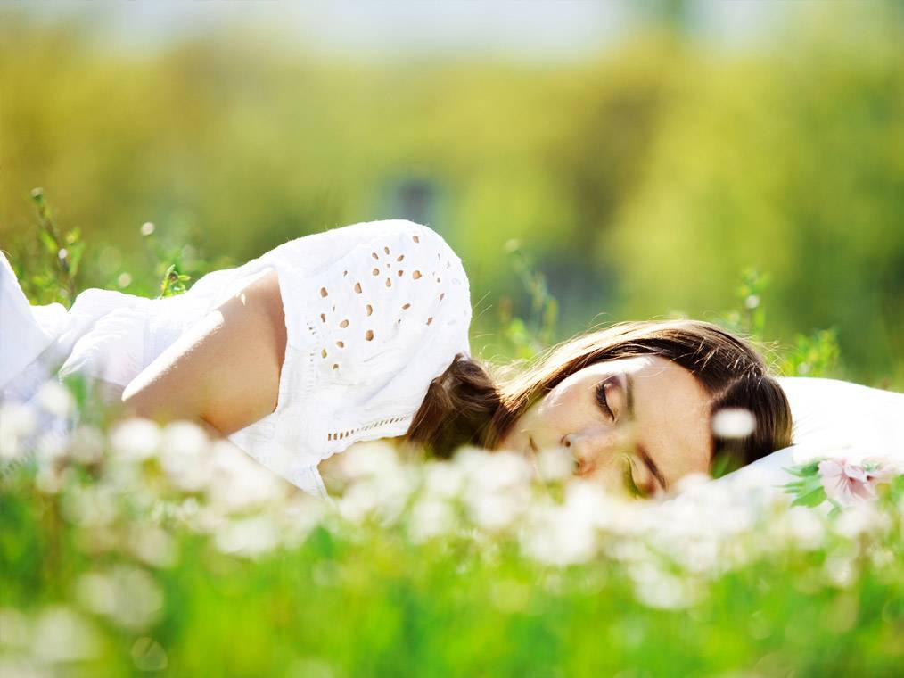 К чему снится лес? сонник - лес приснился во сне и что означает?