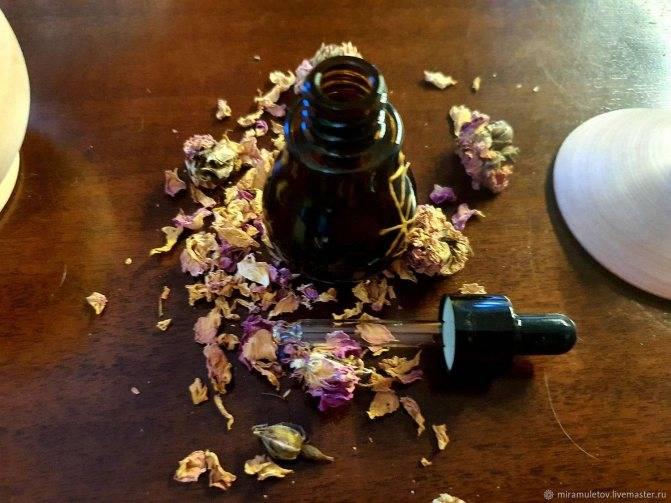 Приворотное зелье - 13 рецептов варки сильных любовных снадобий - выберите удобный для вас