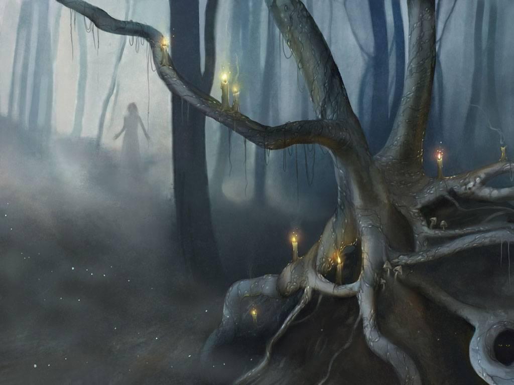 Магическая энергия деревьев: интересные факты, деревья вампиры и доноры, как получить помощь от дерева
