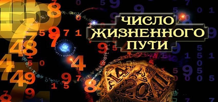 Нумерология богатства: какие числа притягивают деньги