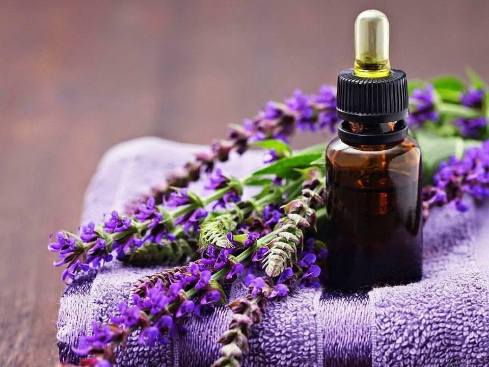 Магические свойства эфирных масел и ароматов: магия запахов, их влияние и применение – блог happywitch
