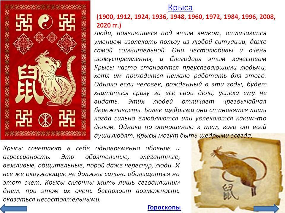 Год Крысы – описание и характеристика знака, годы