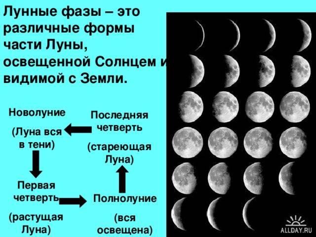 Ритуалы на новолуние (на деньги, любовь, удачу): действенные обряды белой магии + тексты заклинаний на молодой месяц
