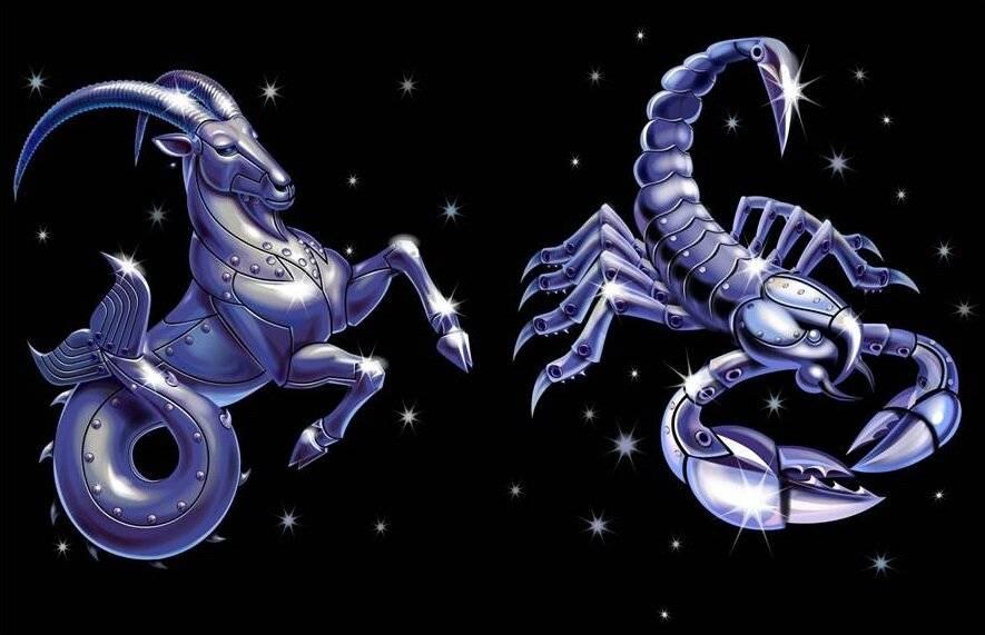 Женщина рак дракон какой мужчина ей нужен. женщина рак-дракон: полная характеристика по гороскопу и ее совместимость