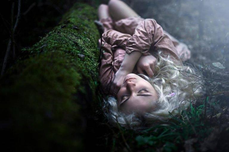 К чему снится лес. Толкование снов