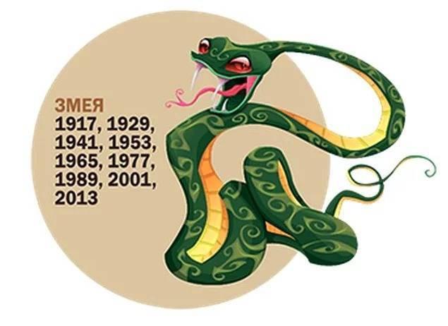 Женщина змея (35 фото): характеристика женщины, рожденной в год змеи, совместимость с мужчиной кабаном и представителями других знаков