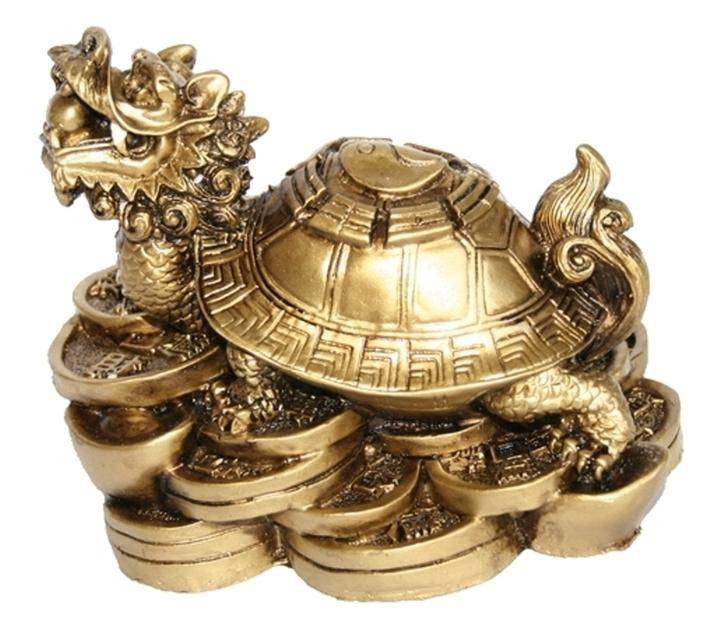 Черепаха: символ чего по фэншуй? черепаха - символ чего в россии?