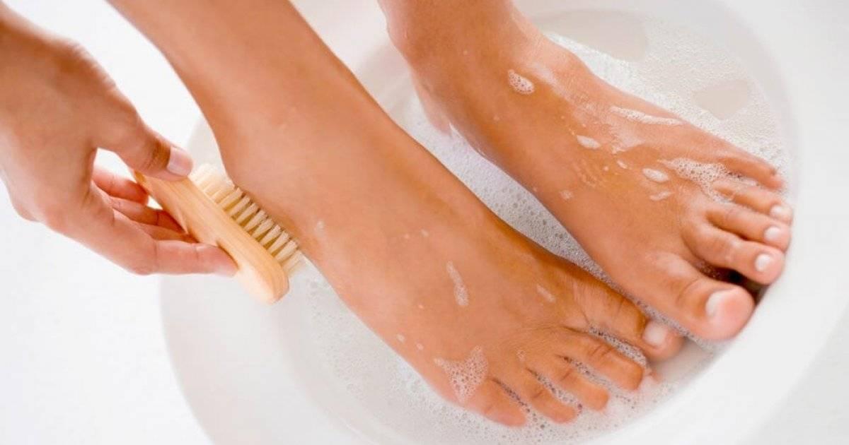 Сонник мыть ноги молоком. к чему снится мыть ноги молоком видеть во сне - сонник дома солнца