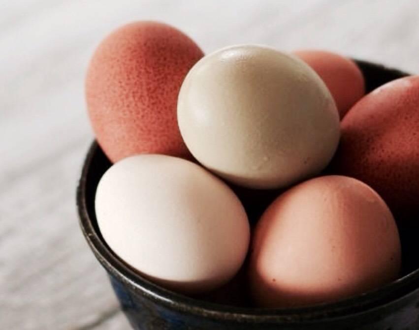 К чему снятся яйца? мужчине - к достатку, а женщине - к новым увлечениям - автор екатерина данилова - журнал женское мнение