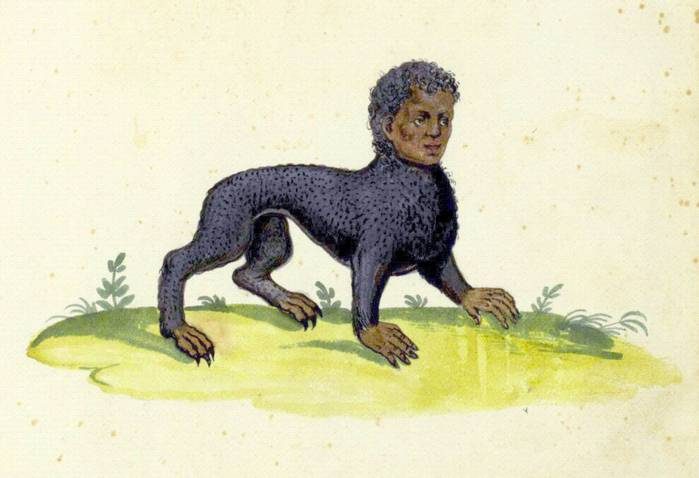 Мифы и легенды * мантикора (manticore). мантикора — легендарное и непобедимое чудовище-людоед образ существа в искусстве