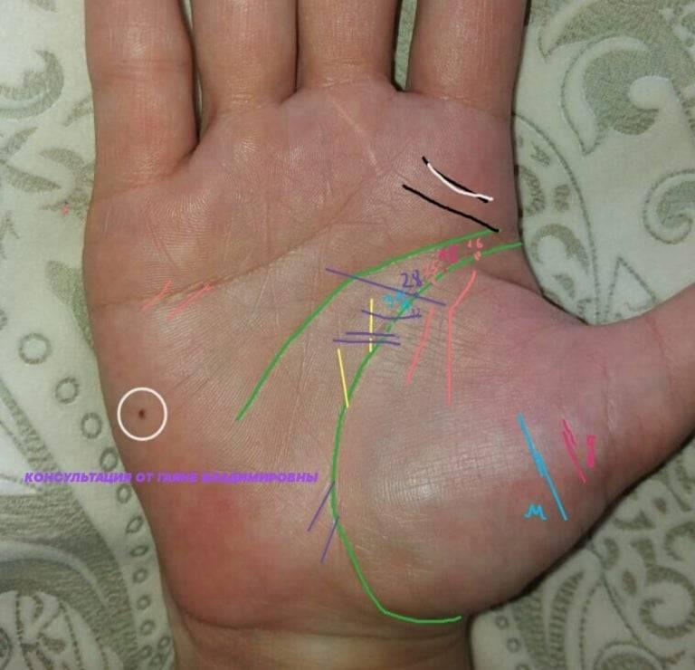 Линии на руке и их значение: хиромантия с разъяснениями и фото для начинающих