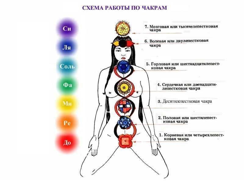 Как открыть сахасрару? упражнения для активизации седьмой чакры.