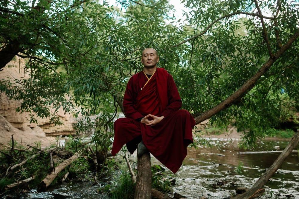 Тибетский сбор — эликсир молодости из 4 трав - советы народной мудрости - медиаплатформа миртесен