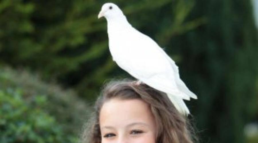Птица нагадила на голову