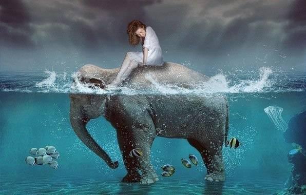 К чему снится кит. сонники про китов в воде во сне