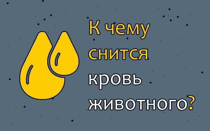 К чему снится кровь из носа у себя, у другого человека – сонник   zdavnews.ru