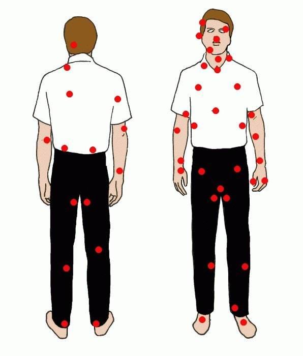 Точки на спине для массажа: подробное описание