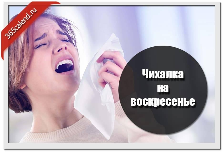 Что означает чихнуть в понедельник: трактовка по времени