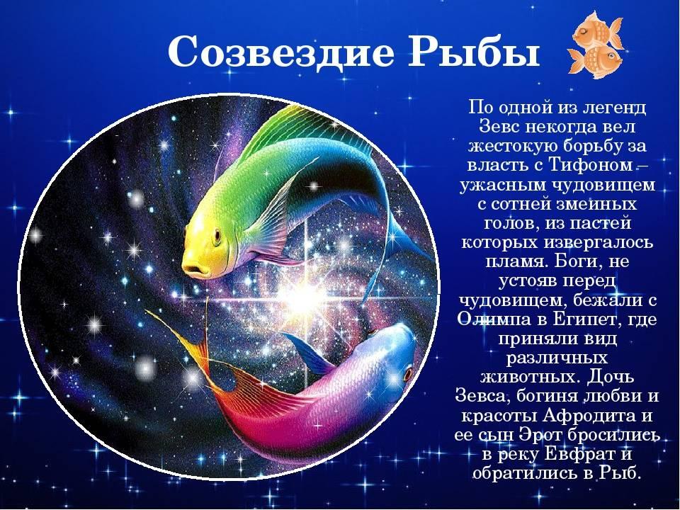 Рыбы знак зодиака – характеристика рыб, общий гороскоп