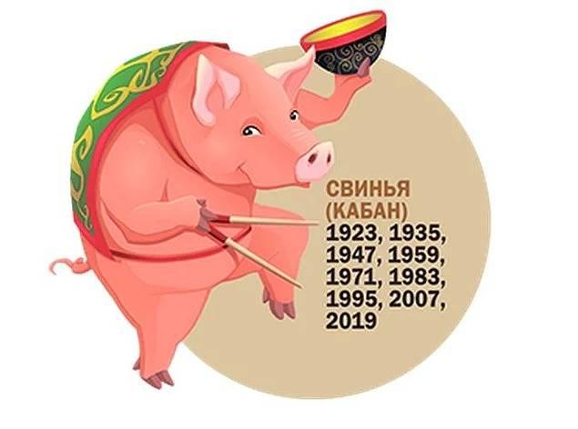 Женщина свинья (кабан)   – характеристика года рождения