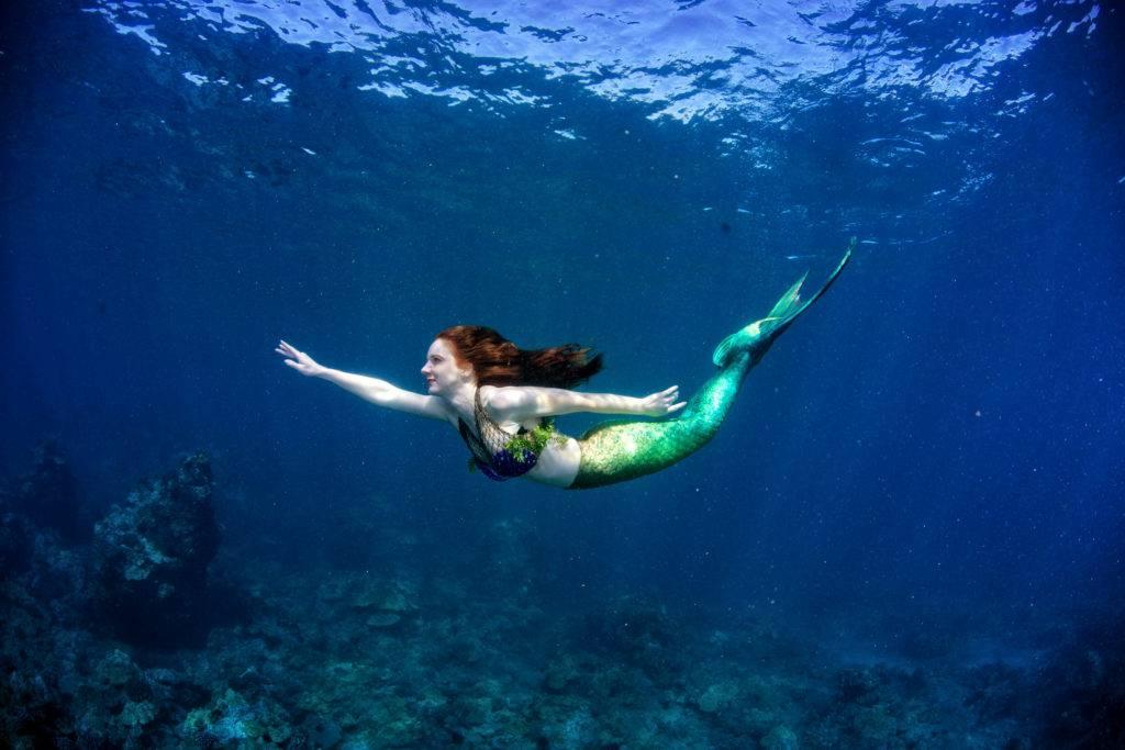 Как стать русалкой по-настоящему ???? как превратиться в русалку ???? астрология и эзотерика